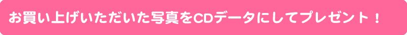 CDデータプレゼント